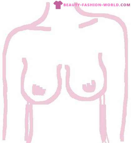 How to determine the shape of their breasts and to choose the right bra