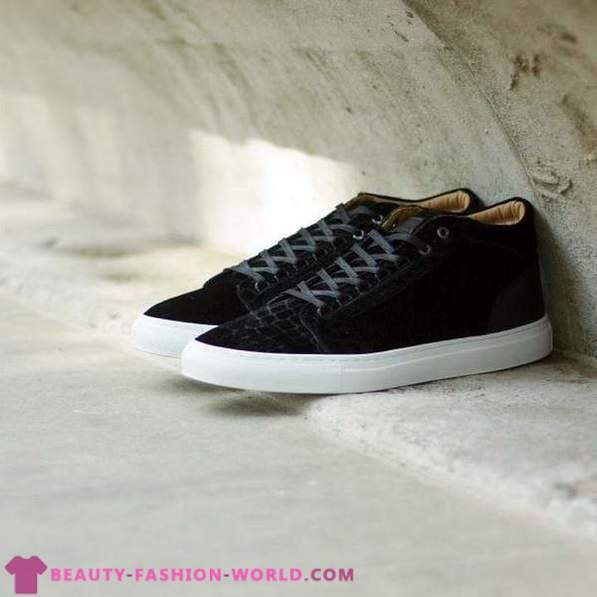 A collection of stunning sports shoes from the brand Android Homme