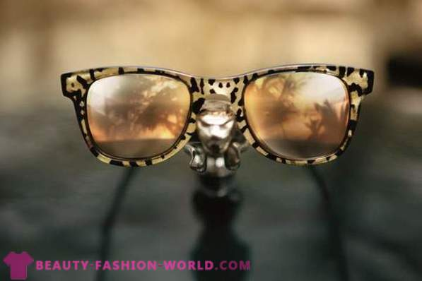 Glam rock collection of sunglasses Carrera 2014