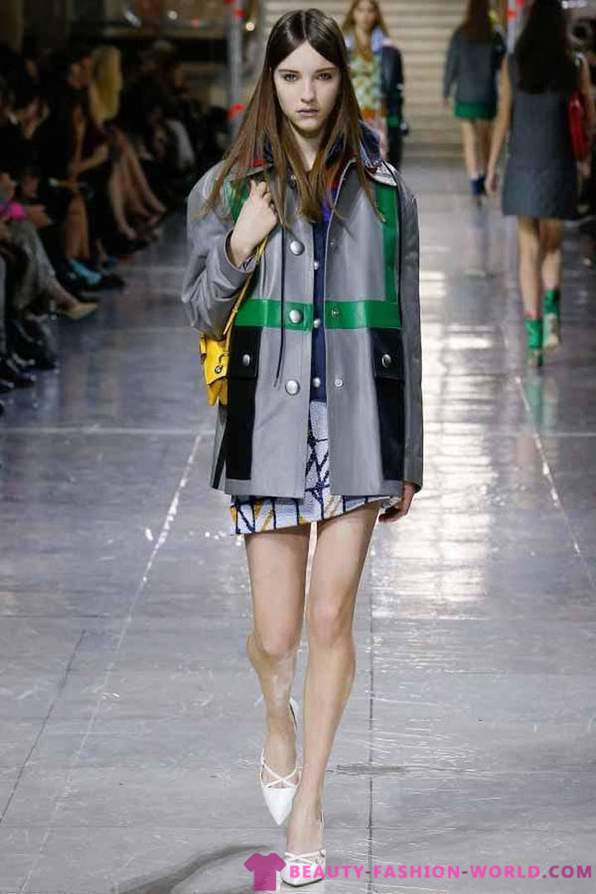 Collection of women's clothing Miu Miu Fall-Winter 2014-2015