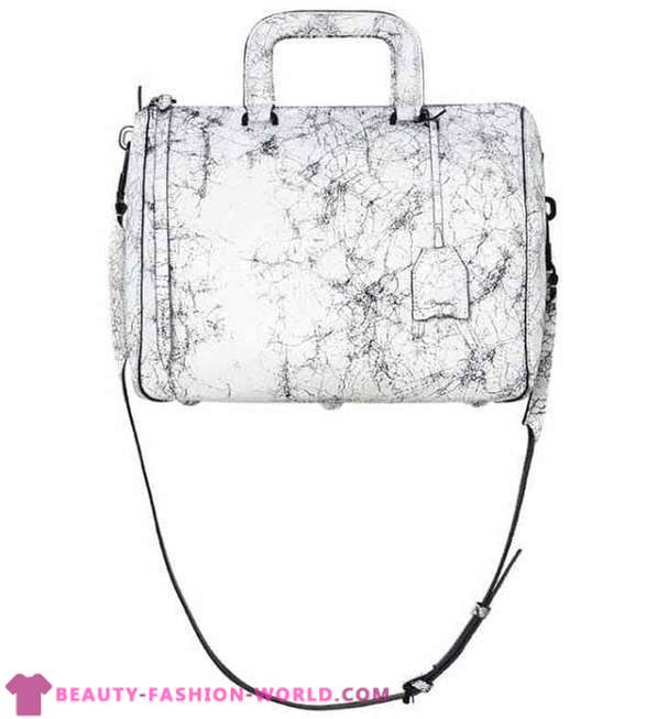The most fashionable bags Autumn-Winter 2013-2014